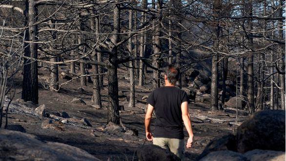Casi 6.000 incendios queman más de 46.000 hectáreas