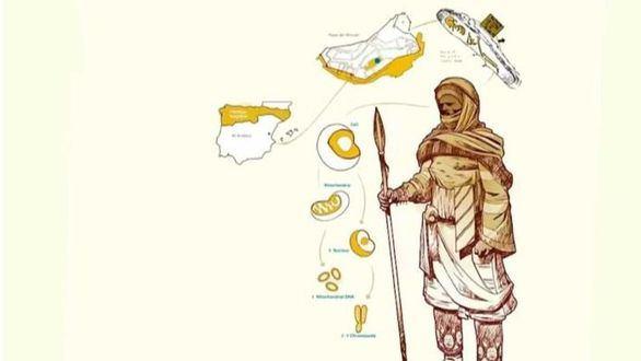 Aclarado el origen del 'Gigante de Segorbe' de la España medieval