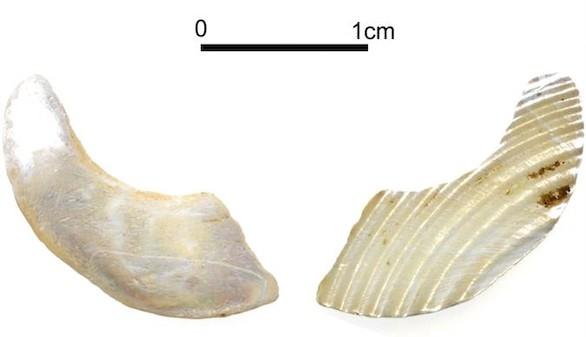 El anzuelo más antiguo del mundo: el hombre ya pescaba hace 23.000 años