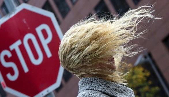 Que significa la alopecia sobre la cabeza