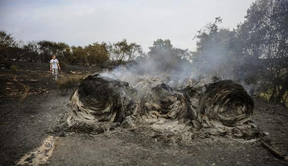 El incendio de Cualedro, en Orense, estabilizado tras quemar 3.000 hectáreas