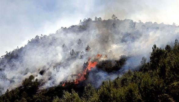 Las llamas obligan evacuar a 250 alumnos de un colegio de Sagunto