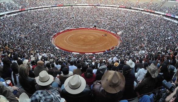 El toro en México. Novilladas Alternas