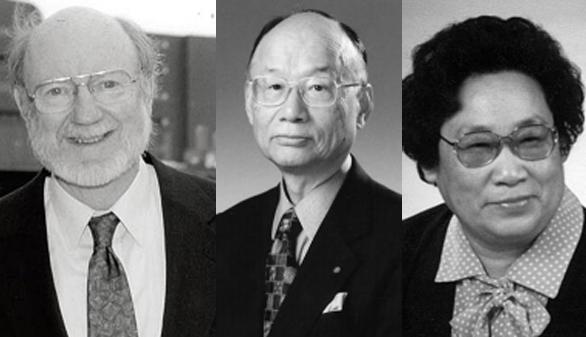 El Nobel de Medicina premia los estudios sobre infecciones causadas por parásitos y la malaria