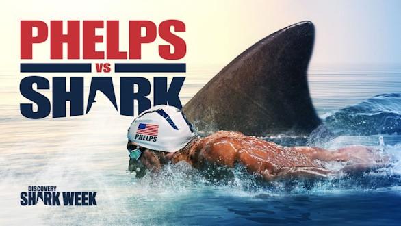 Phelps pierde su carrera contra un tiburón blanco por tan solo dos segundos