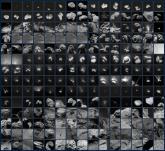 Un mosaico de 210 imágenes repasa la histórica misión de Rosetta