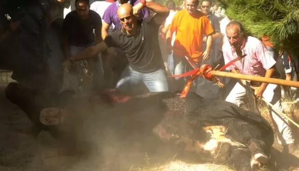 Tordesillas, blindada para celebrar el polémico Toro de la Vega