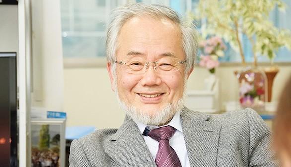 El japonés Yoshinori Ohsumi, Nobel de Medicina 2016 por su estudio de la 'autofagia'