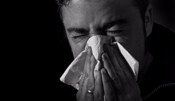 Cómo tratar las alergias estacionales con Terapias Naturales
