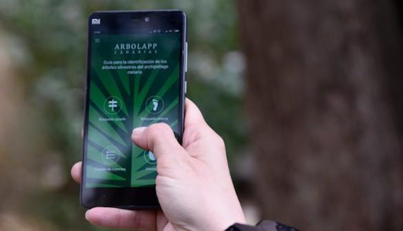 Arbolapp Canarias, la aplicación para identificar los árboles de las islas