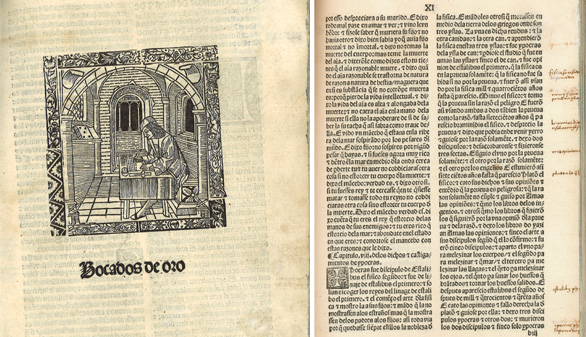 La BNE adquiere un tratado didáctico del siglo XIII de gran rareza