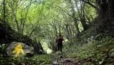 El Camino de Santiago bate su récord con 278.041 peregrinos registrados