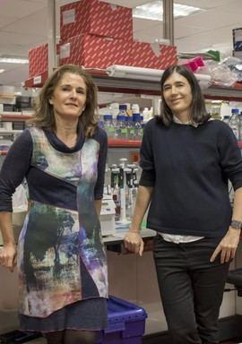 Paula Martínez (izq.) y María A. Blasco (drcha.), principales autoras del trabajo
