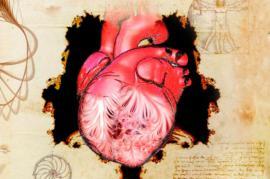 Leonardo da Vinci adelantó hace 500 años las estructuras moleculares internas del corazón El corazón y sus trabéculas, descritos por primera vez por Leonardo da Vinci en el siglo XVI.
