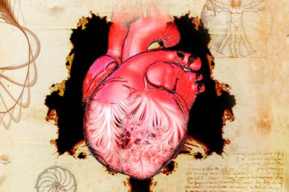 Leonardo adelantó hace 500 años las estructuras moleculares del corazón
