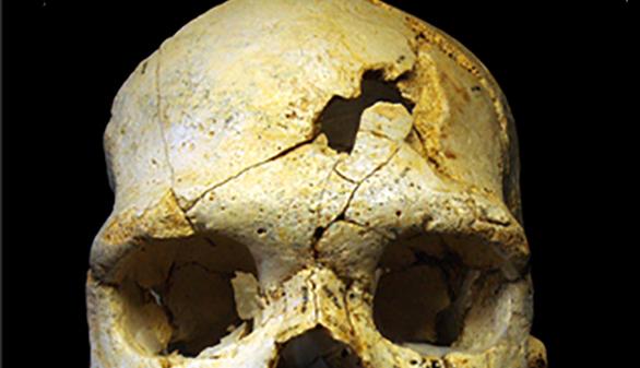 El primer asesinato demostrado de la historia ocurrió hace 430.000 años