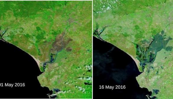 Doñana renace en mayo después de uno de los inviernos más secos