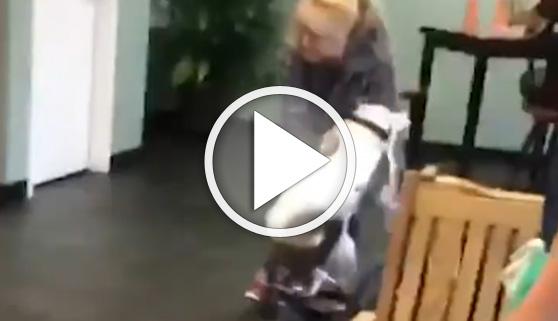 Vídeos virales. Este perro recibió su mejor regalo de Navidad