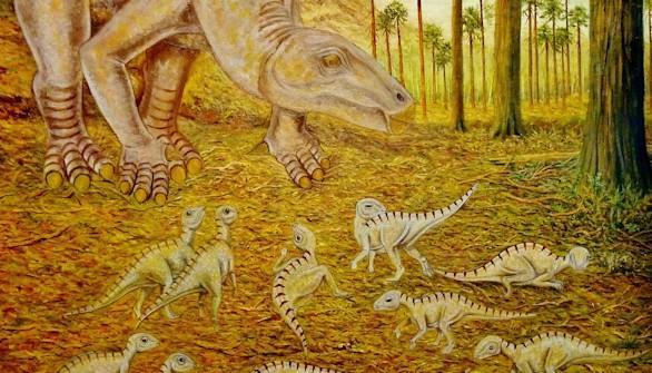 Una nueva especie de dinosaurio 'Iguanodon' en Teruel
