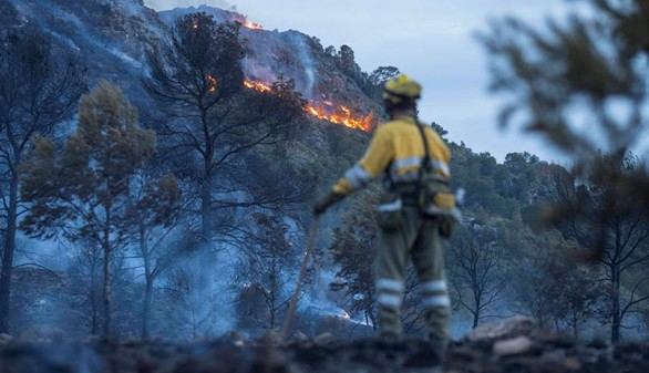 La UME se une a la lucha contra un incendio en Calasparra