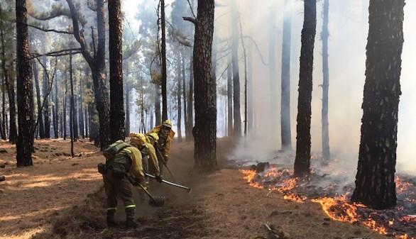 El incendio de La Palma, aún