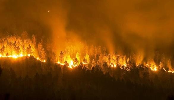 Orense arde sin control: miles de hectáreas y el fuego se acerca a las casas