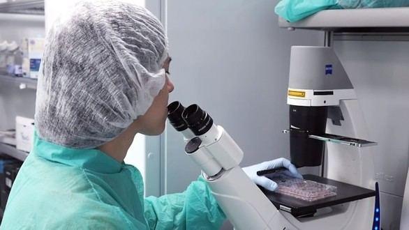 Descubierto un nuevo método para regular la plasticidad celular