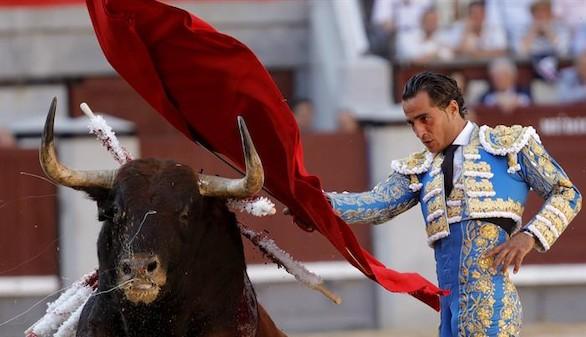 El Toro en México. Separando las fiestas, separamos la amargura