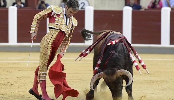 El toro en México. La fiesta, los agujeros del Gruyer