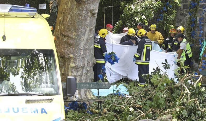 Doce muertos al caer un árbol en una romería en Madeira