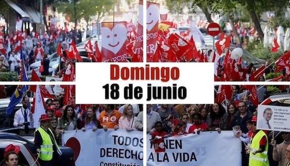 Varias ciudades de España celebran este domingo la VII Marcha por la Vida