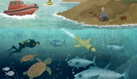 Historias del Mediterráneo II. Nuestro mar como nunca te lo han contado