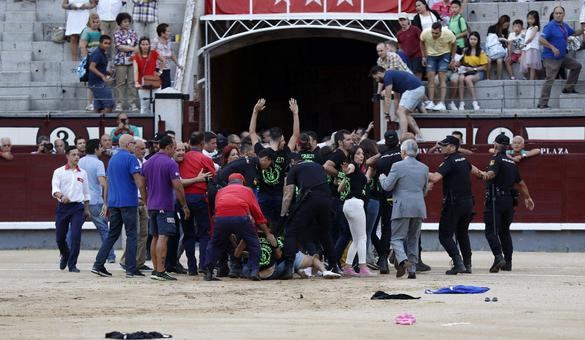 Un grupo de antitaurinos salta al ruedo durante una novillada nocturna en Las Ventas