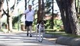 Rajoy, deporte con 'Rico' y familia antes de las elecciones