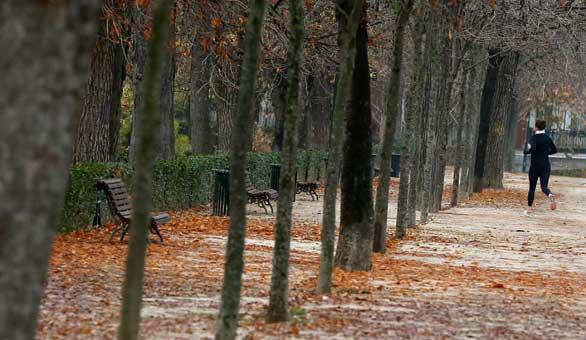 El Parque del Retiro el 29 de diciembre de 2015. Efe