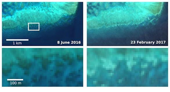 Así se ve la decoloración de la Gran Barrera de Coral desde el espacio