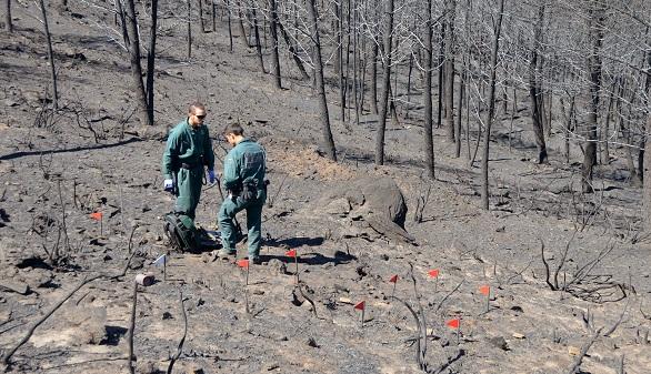 El incendio en la Sierra de Gata, controlado