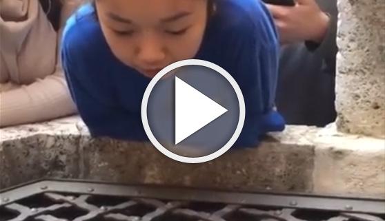 Vídeos virales. Dio con un pozo que embellecía su voz