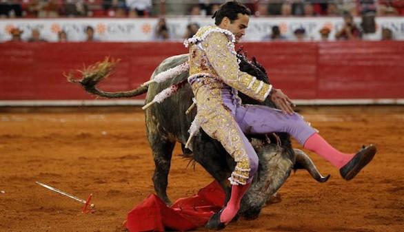 El toro en México. Lo negro de una semana gris