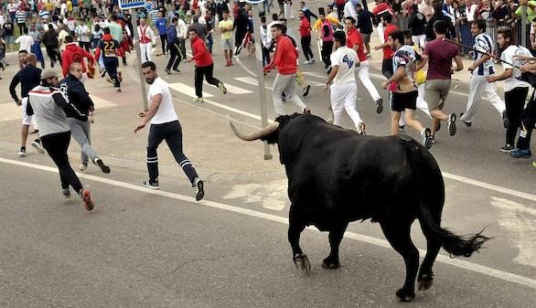 Choque entre animalistas y vecinos en Tordesillas