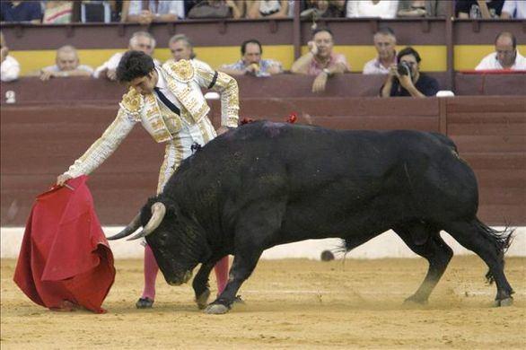 El toro en México. La negación del presente sin la conciencia del pasado